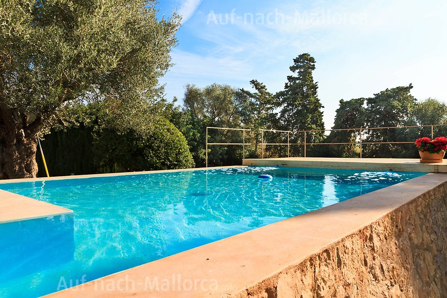 Finca Can Pamboli: Pool der Finca
